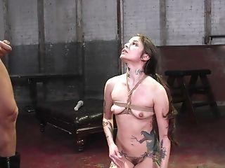 Babe, BDSM, Blowjob, Bondage, Cute, Dick, Double Penetration, Felching, Gangbang, Hardcore,