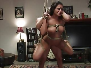 BDSM, Bondage, Brunette, Charley Chase, Domination, Extreme, Fetish, Hardcore, Humiliation, Princess Donna,